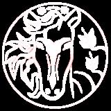 https://horoskop.gold/wp-content/uploads/2020/04/konj-160x160.png